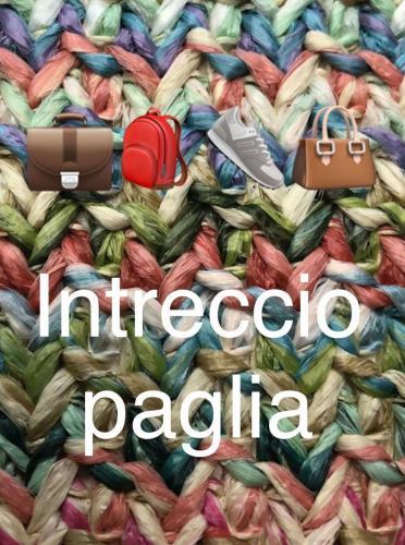 PAGLIA (5)